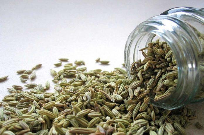 Saunf aka Fennel Seed or Aniseed