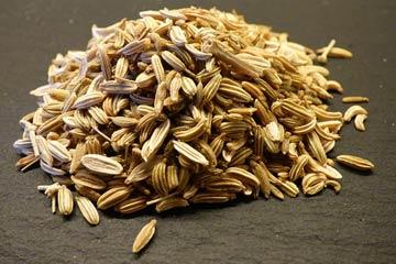 Top 15 benefits of fennel seeds