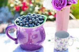 blueberries-summer-fruit-fresh