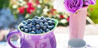 blueberries-summer-fruit-fresh
