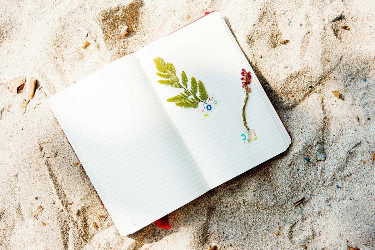 Leaves in a notebook