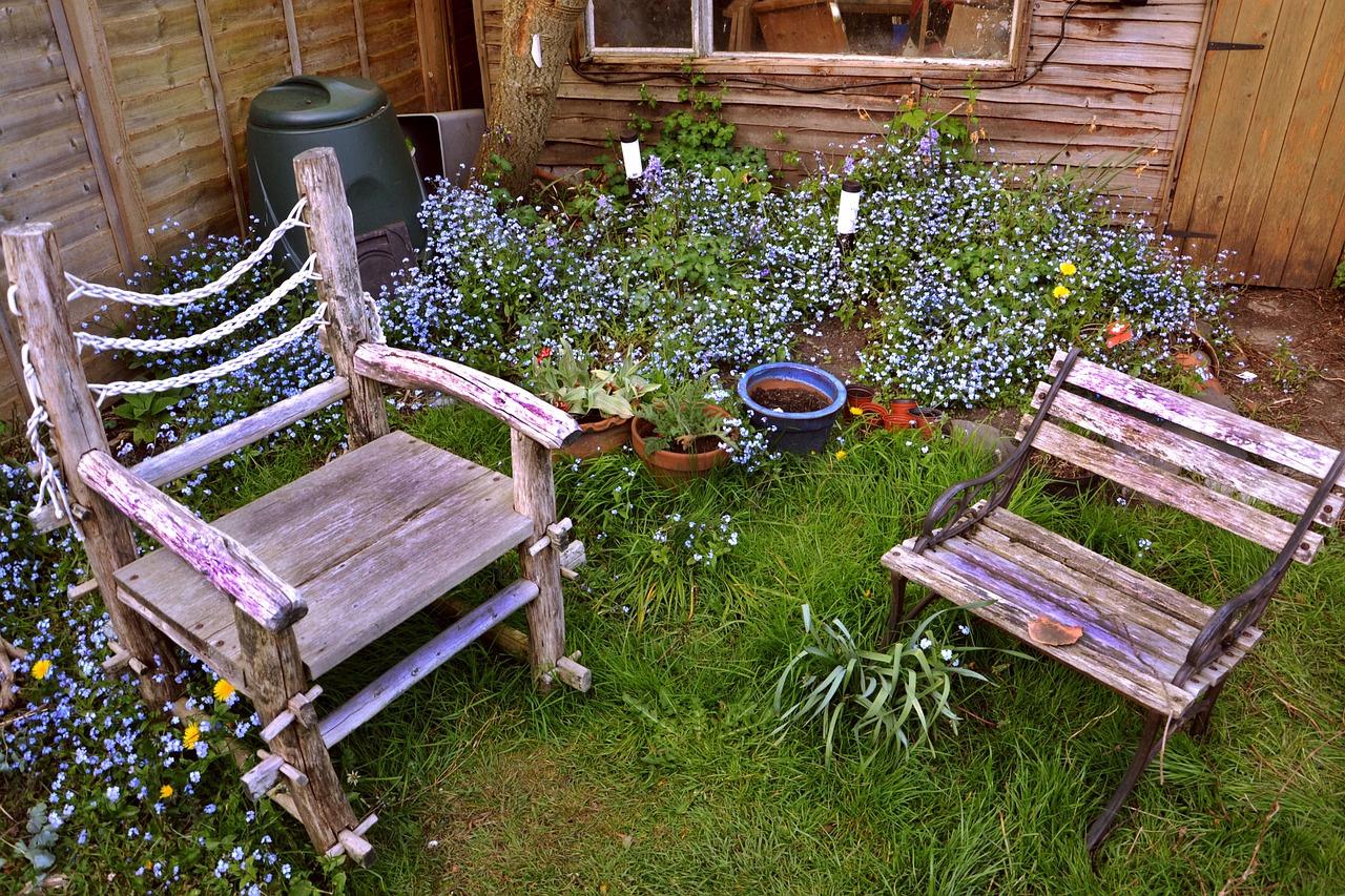 Garden with wild plants