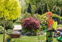 seasonal garden fertilization