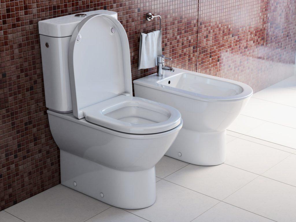 toilet bowl and bidet in the modern bathroom